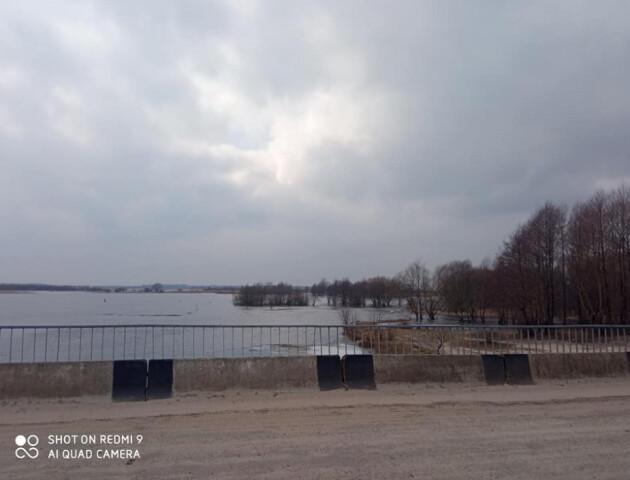 У Річиці на Ратнівщині розлилася Прип'ять