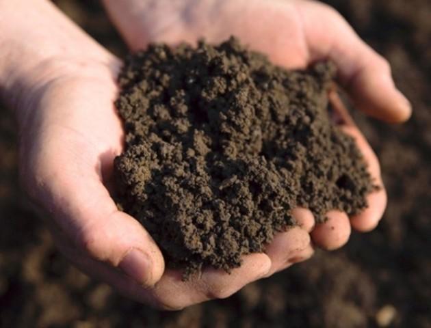 Передача землі стимулює об'єднання громад, - Мінагрополітики