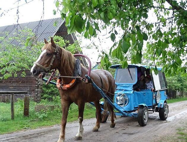 Волинянин змайстрував «карету», щоб возити внуків