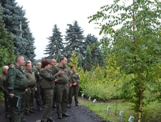 Волинські лісники проінспектували результати піврічної роботи. ФОТО