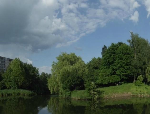 У Луцькому парку висадять алею хвойних дерев
