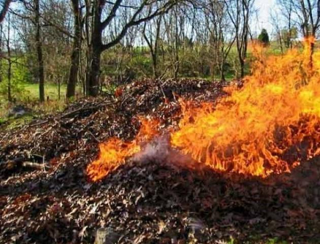 Куди лучанам скаржитися на сусідів, які палять сухе листя
