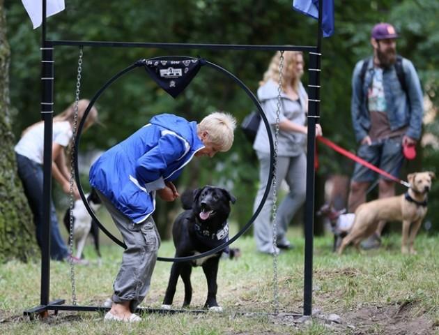 «За» та «проти»: чи потрібні тренажери для собак у Луцьку