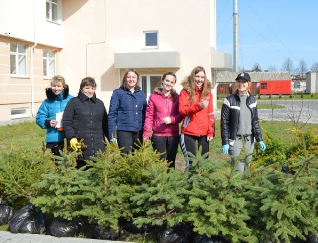 Лісівники та медики разом: як озеленювали територію Волинського перинатального центру