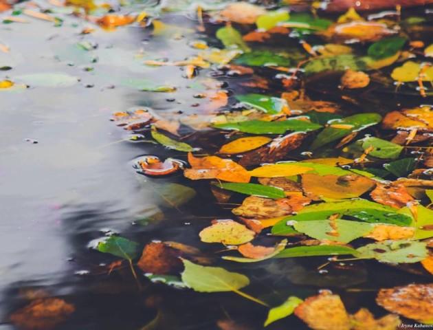 Атмосферні фото осені у Луцьку