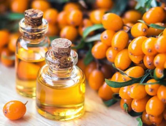 В Україні заборонили обліпихову олію