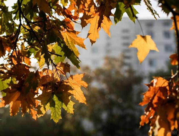 Якою буде погода в Луцьку та області 13 листопада