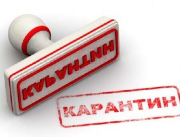 Кому в Луцьку дозволять працювати в умовах карантину? Список