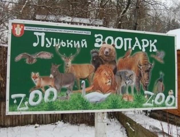 Годувати чи ні: лучани посперечалися через зоопарк