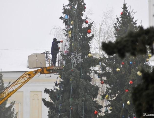 Новорічні ялинки у Луцьку: як прикрашають,  якими вогниками та у скільки це обійдеться. ВІДЕО