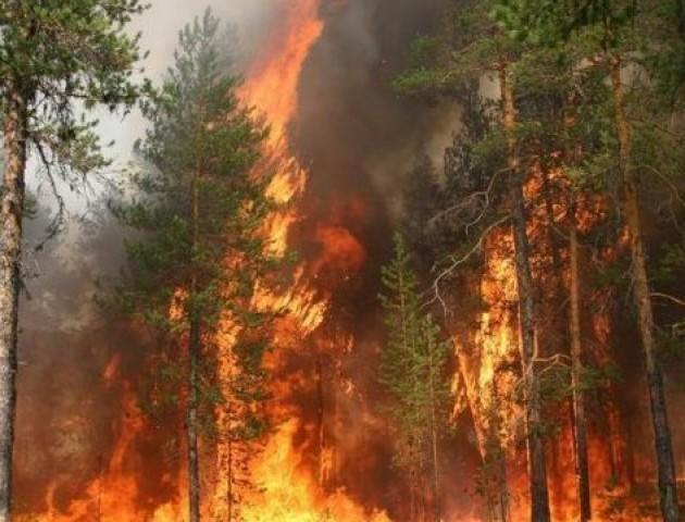 На Волині – найвищий клас пожежної небезпеки