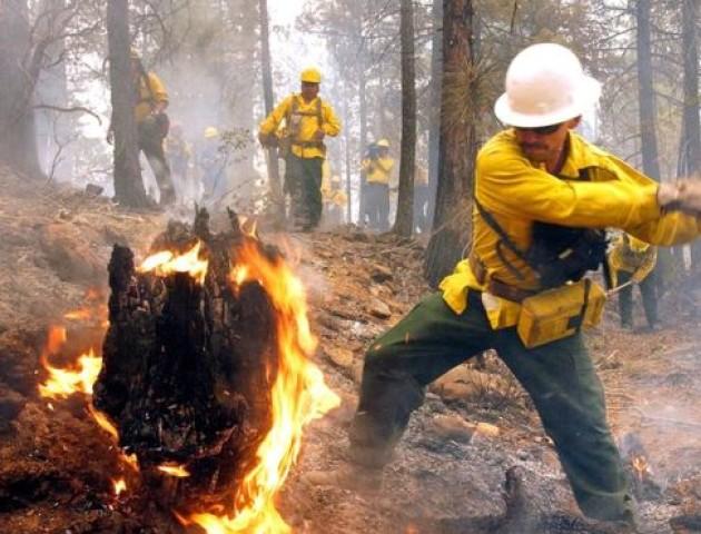 Підлітка зобов'язали сплатити $36 млн штрафу за лісову пожежу