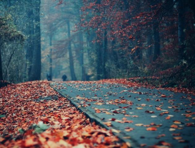 Якою буде погода у Луцьку та області 4 жовтня