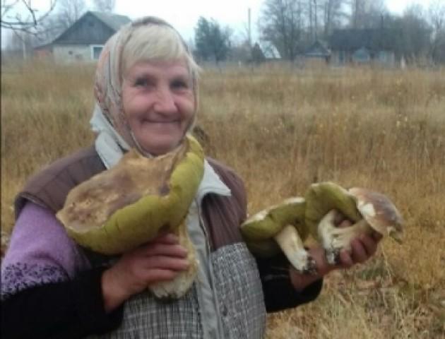 На Волині пенсіонерка вирощує велетенські гриби