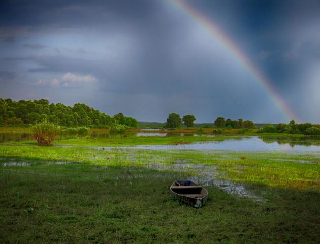 Якою буде погода у Луцьку та області 17 травня