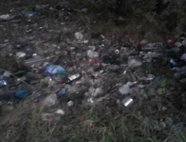 Лучанку обурила кількість сміття в Гаразджі. ФОТО
