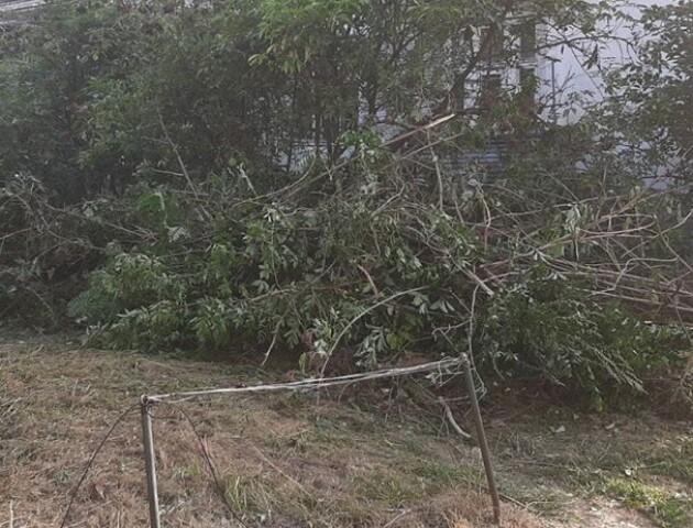 «Навели порядок»: у Луцьку комунальники підкинули сміття сусідам