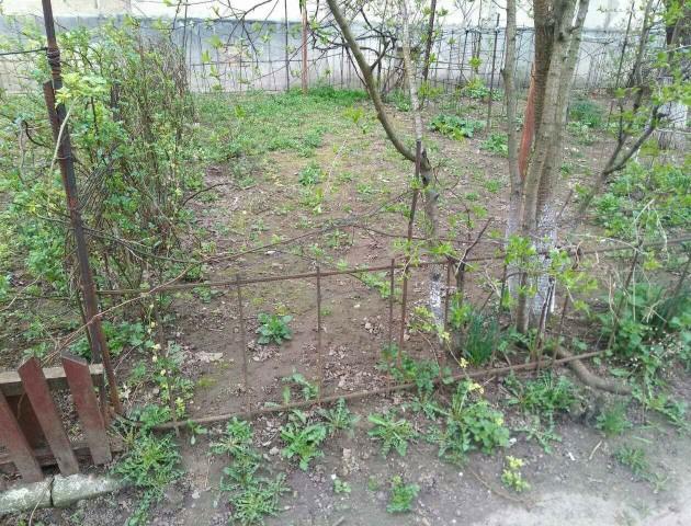 У Луцьку знесли власноруч облаштовані городи на прибудинкових територіях