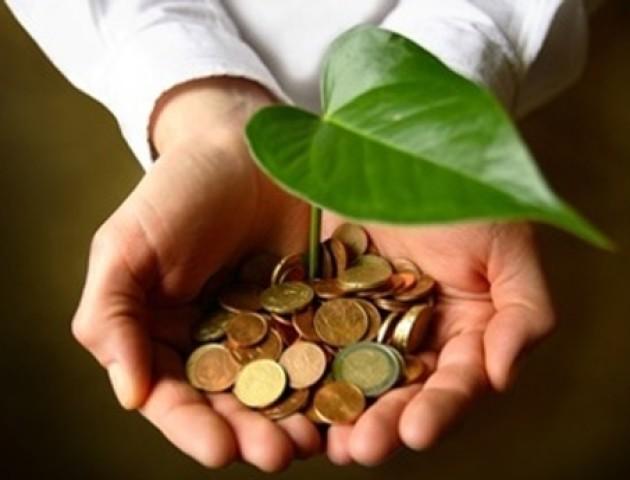 До зведеного бюджету у Волинській області надійшло 8,4 мільйона гривень екологічного податку