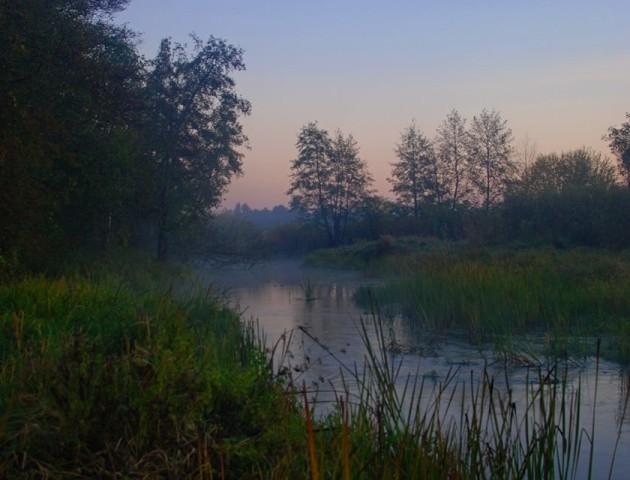 Осіння краса річки Прип'ять: опублікували вражаючі фотографії