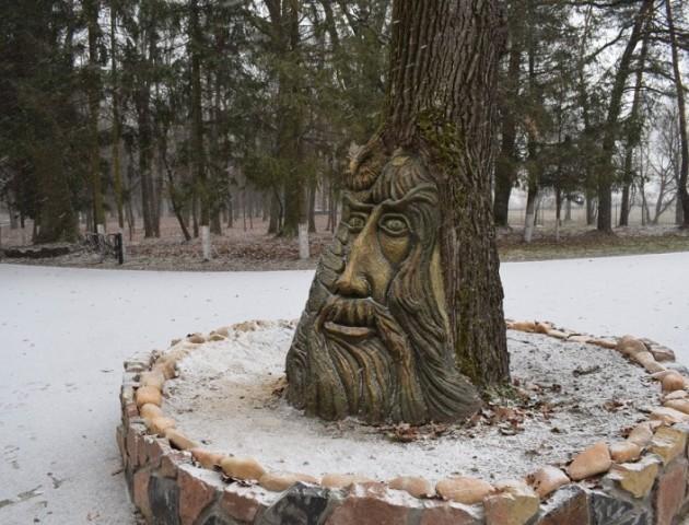 На стовбурі 150-річного дуба на Волині зробили оригінальну скульптуру. ФОТО