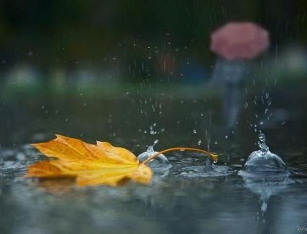 Якою буде погода у Луцьку та області 7 грудня