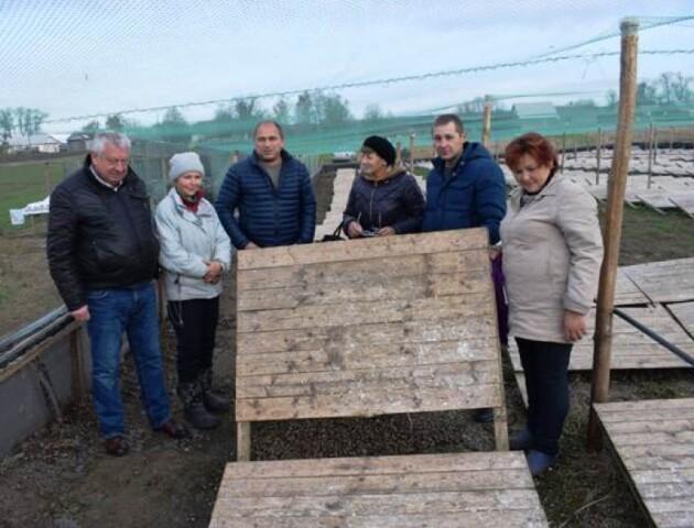 У Горохівському районі сім'я вирощує на фермі равликів
