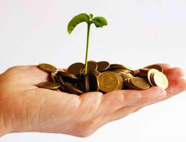 Українці отримали понад 350 млн «підприємницьких» кредитів