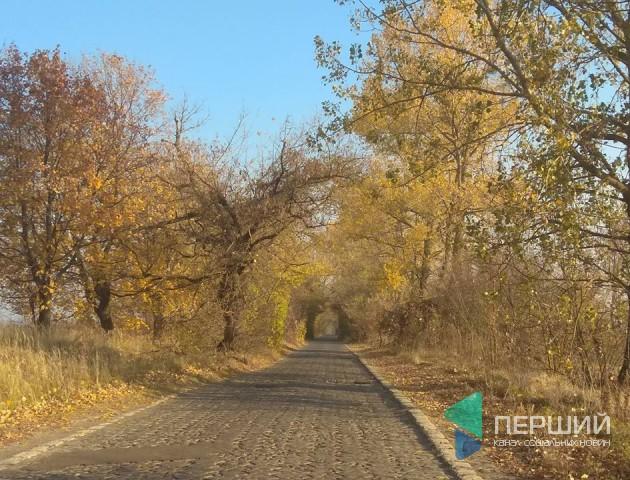 На Волині реставрують історичну дорогу з бруківки