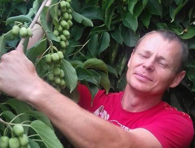 «Все просто, це ж не картопля» –  фермер на Волині вирощує фундук.  ФОТО