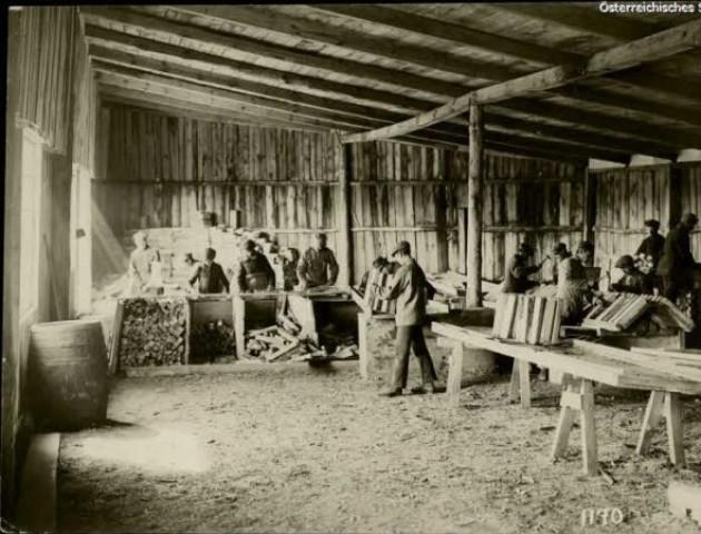 Волинь у часи Першої світової на знімках австрійських військових фотографів. ФОТО