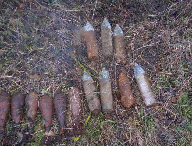 На Волині сапери знешкодили 8 мінометних мін часів Другої світової війни