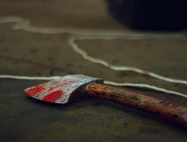 Волинянина, який топорищем забив дружину до смерті, посадили на 8 років за ґрати