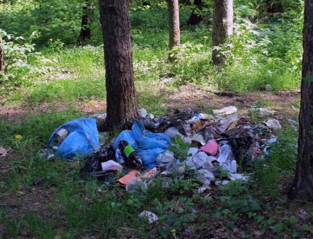 Селяни засипали сміттям ліс на Волині. ВІДЕО