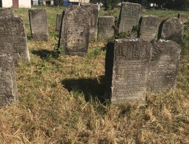 Міжнародна організація облаштує забуте єврейське кладовище на Волині