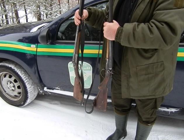 Дві рушниці та браконьєр: волинські лісівники розповіли про  результати «полювання» на порушників