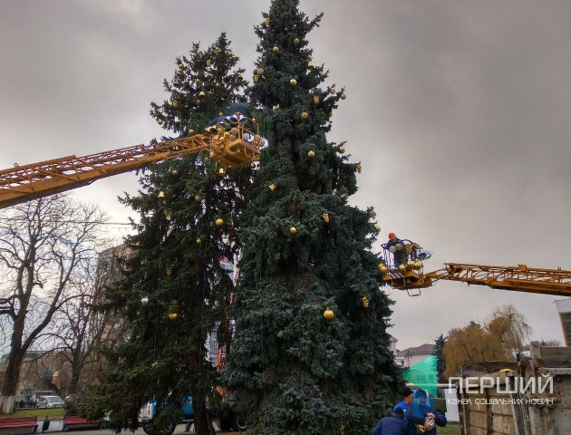 Свято наближається: у Луцьку прикрашають головну ялинку міста. ФОТО
