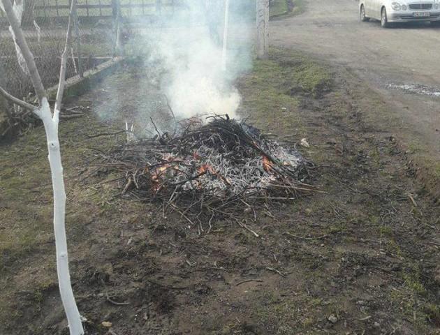 Муніципали покарали лучан, які палили гілки