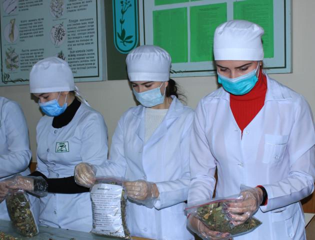 У Луцькому медколеджі студенти виготовили чай та мазь для захисників. ФОТО