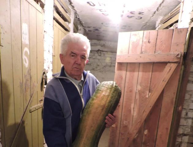 Лучанин виростив овоча-гіганта. ФОТО