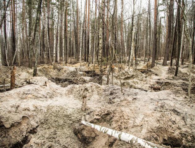 У мережі показали, як копачі бурштину знищили ліс на Рівненщині
