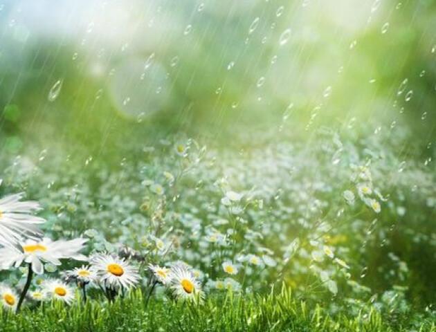 Слухати дощ замість музики:перенесли арт-променад «Так звучить Луцьк»
