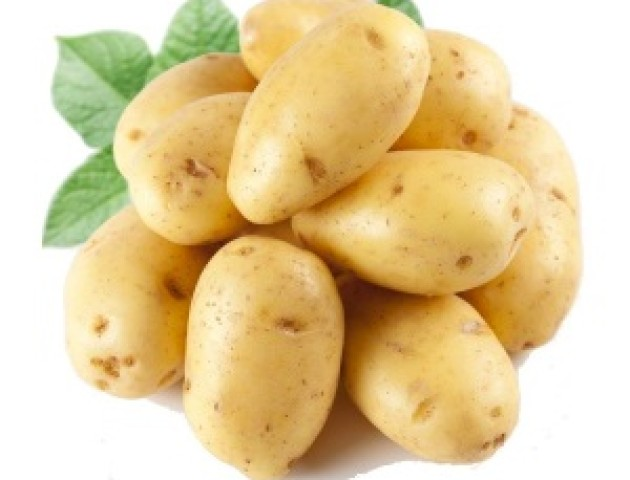 За рік Україна збільшила експорт картоплі у 3,5 рази