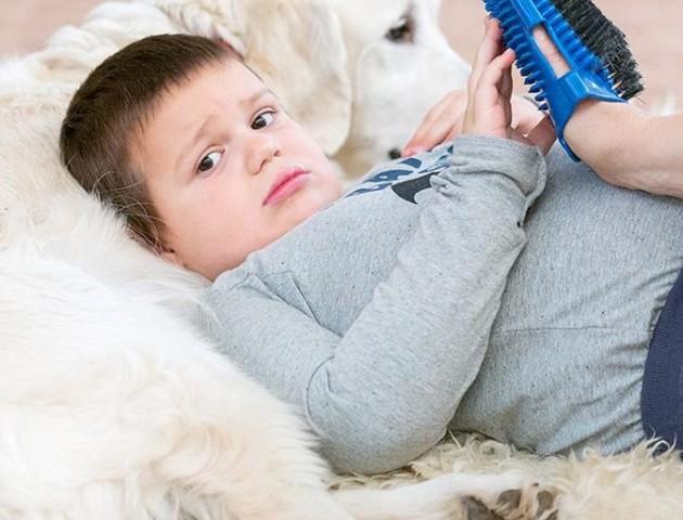 У Луцьку лікувати дітей з аутизмом допомагають собаки. ВІДЕО