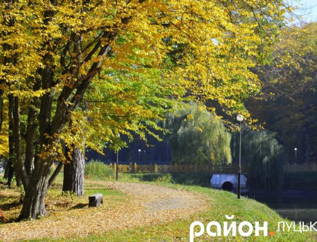 Краса та спокій: золота осінь у Воротневі. ВІДЕО