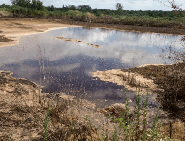 Активіст перевірив фільтраційні поля цукрового заводу