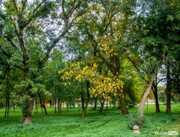 Осінь у центральному парку Луцька. ФОТО