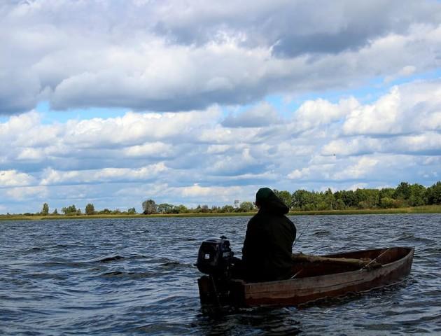 Краса волинського озера на світлинах. ФОТО