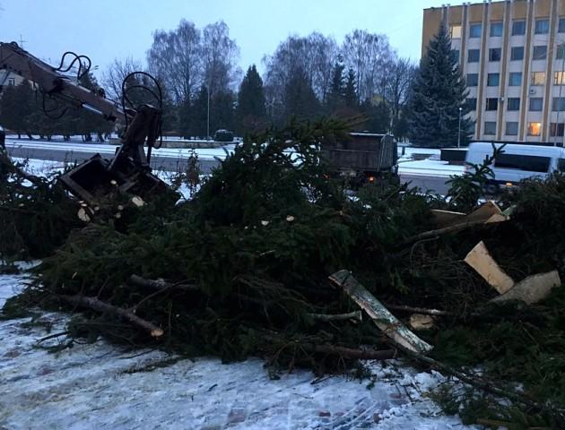 У Нововолинську розламалася новорічна ялинка. ФОТО