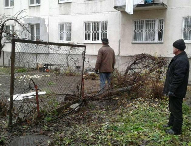 Де в Луцьку знесуть незаконні паркани
